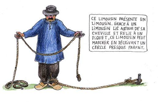 Limousin 1